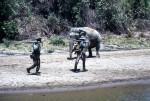 Myo Chaung 6 Elephant